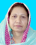 dr. noreen majeed